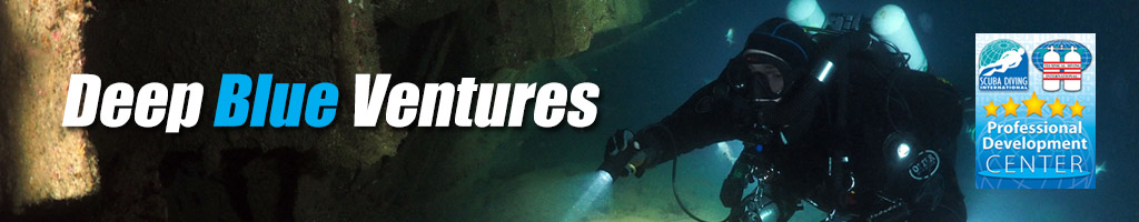 Deep Blue Ventures header