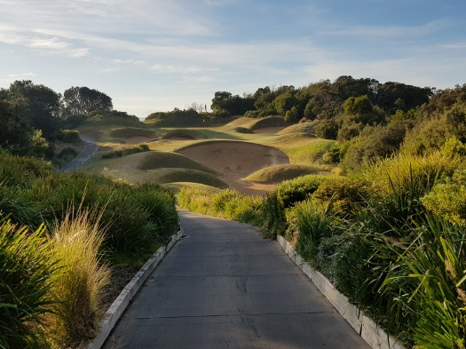 Golf for four: 18 holes of Golf at Eagle Ridge