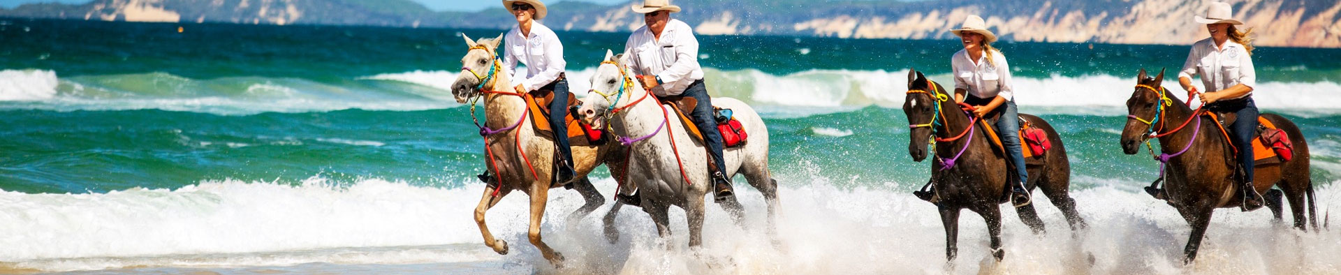 Rainbow Beach Horse Rides header