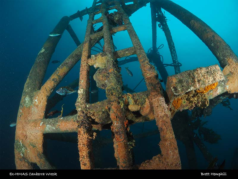 Double Wreck Dive (Canberra and J4 Submarine) 22m+