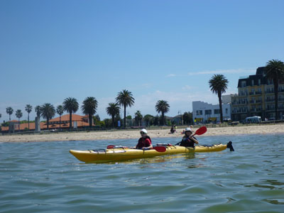 Half Day Tour - St Kilda