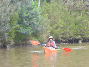 Kayak Hire - 1 Day (Single Kayak and Self Guided)