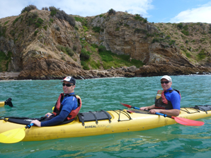Full Day Sea Kayak Tour - Point Nepean Dolphin Sanctuary or Phillip Island